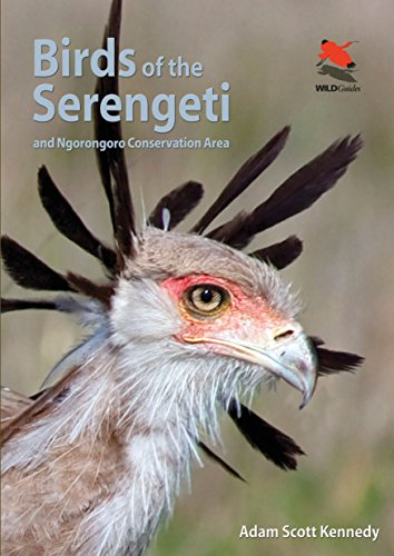 Kennedy, A: Birds of the Serengeti: And Ngorongoro Conservation Area (Wildlife Guides) von Princeton University Press