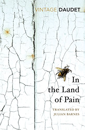 In the Land of Pain (Vintage Classics) von Vintage Classics