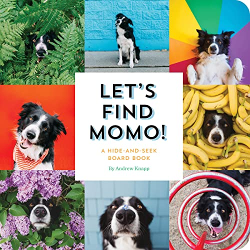 Let's Find Momo!: A Hide-and-Seek Board Book von Quirk Books