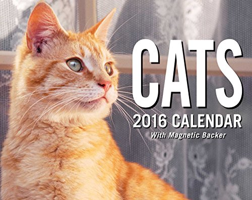 Cats 2016 Mini Day-to-Day Calendar von Andrews McMeel Publishing