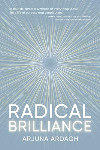 Radical Brilliance: The Anatomy of How and Why People Have Original Life-Changing Ideas von SelfXPress