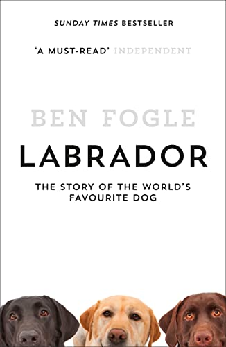 Labrador: The Story of the World's Favourite Dog von HarperCollins Publishers
