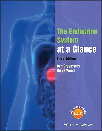 The Endocrine System at a Glance von Wiley-Blackwell