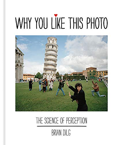 Why You Like This Photo: The science of perception von Ilex Press