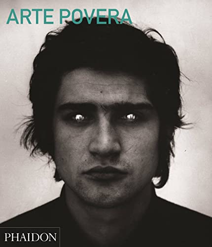 Arte Povera (Abridged Edition) (F A THEM MOVEME) von Phaidon Press