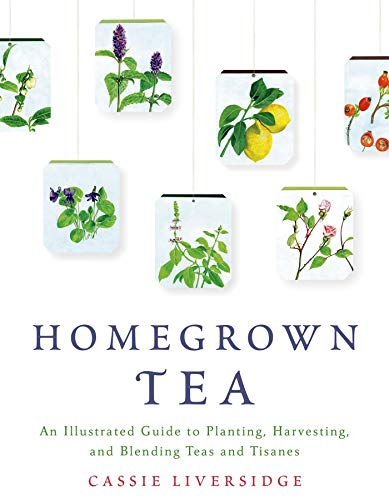 Homegrown Tea: An Illustrated Guide to Planting, Harvesting, and Blending Teas and Tisanes von Griffin Publishing