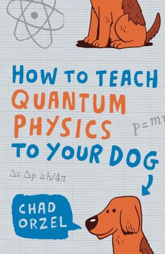 How to Teach Quantum Physics to Your Dog von Oneworld Publications