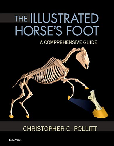 The Illustrated Horse's Foot: A comprehensive guide von Saunders