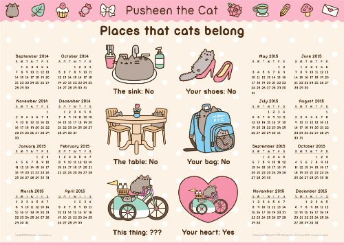 Pusheen the Cat 2014-15 16-Month Calendar Poster von Andrews McMeel Publishing