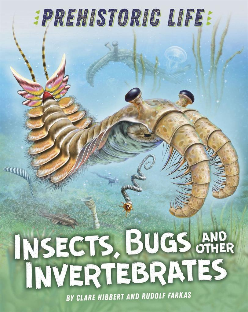 Prehistoric Life: Insects Bugs and Other Invertebrates von Hachette Children's Group