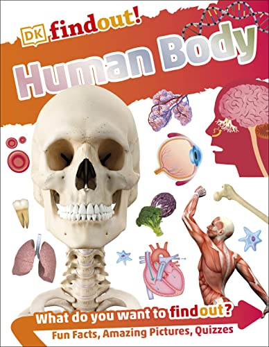 Human Body (DKfindout!)