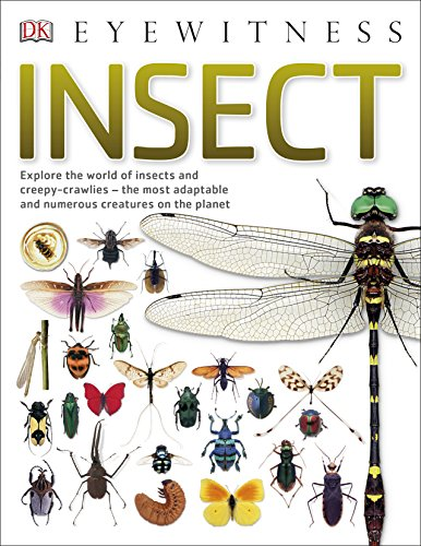 Insect: Explore the world of insects and creepy-crawlies – the most adaptable and numerous creatures on the planet (DK Eyewitness) von Dorling Kindersley Uk