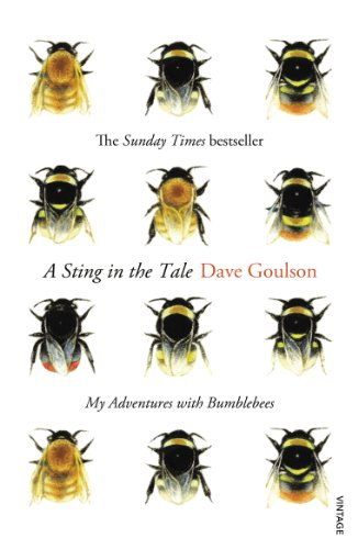 A Sting in the Tale: My Adventures with Bumblebees von Random House Uk; Vintage, London