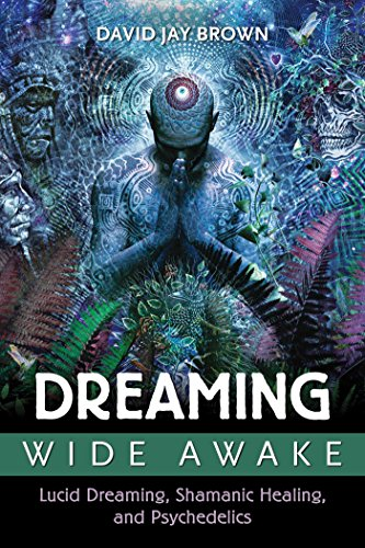 Dreaming Wide Awake: Lucid Dreaming, Shamanic Healing, and Psychedelics von Park Street Press
