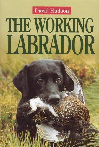 The Working Labrador von Quiller Publishing Ltd