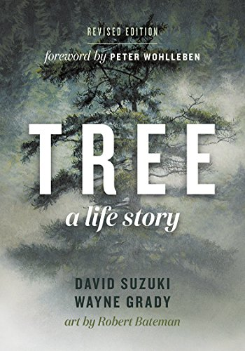 Tree: A Life Story von Ingram Publisher Servicesbooks; Greystone Books