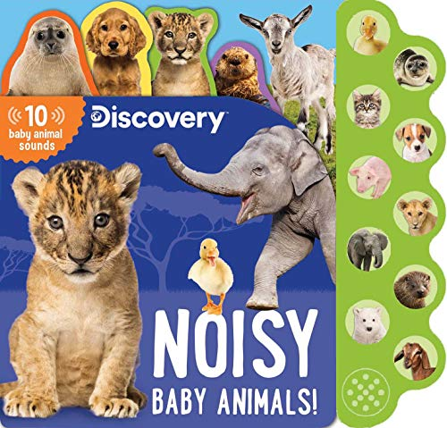 Discovery: Noisy Baby Animals! (10-Button Sound Books) von Silver Dolphin Books