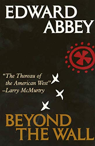 Beyond the Wall: Essays from the Outside von Holt Paperbacks