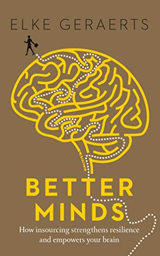 Better Minds: How Insourcing Strengthens Resilience and Empowers Your Brain von Lannoo