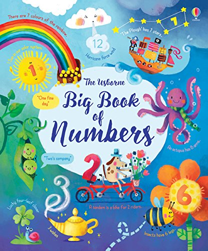 Brooks, F: Big Book of Numbers (Big Books) von Usborne Publishing Ltd