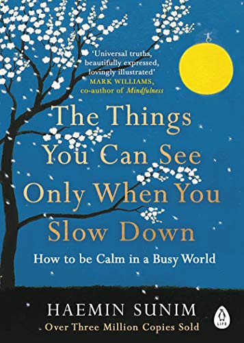The Things You Can See Only When You Slow Down: How to be Calm in a Busy World von Penguin Books Ltd (UK)