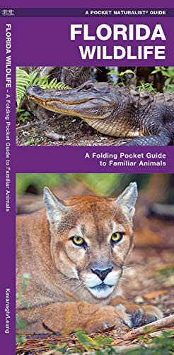 Florida Wildlife: A Folding Guide to Familiar Animals (Pocket Naturalist Guide Series) von Waterford Press