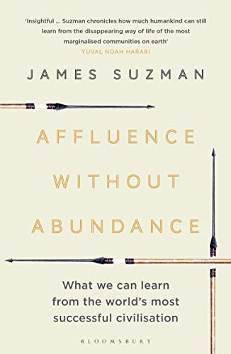 Affluence Without Abundance: What We Can Learn from the World's Most Successful Civilisation von Bloomsbury Publishing