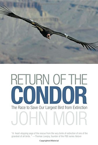 Return of the Condor: The Race to Save Our Largest Bird from Extinction von LYONS PR