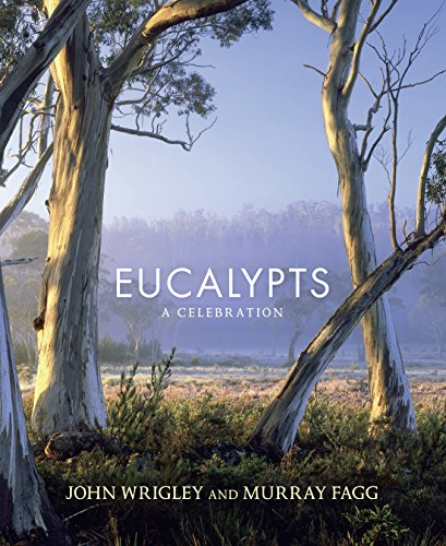Eucalypts: A Celebration von ALLEN & UNWIN