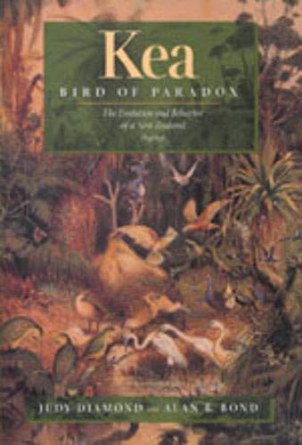 Kea, Bird of Paradox - The Evolution & Behavior of a New Zealand Parrot: The Evolution and Behavior of a New Zealand Parrot von University of California Press