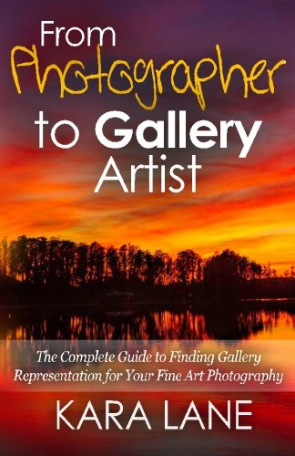 From Photographer to Gallery Artist: The Complete Guide to Finding Gallery Representation for Your Fine Art Photography von CreateSpace Independent Publishing Platform