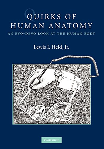 Quirks of Human Anatomy: An Evo-Devo Look at the Human Body von Cambridge University Press