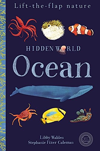 Hidden World: Ocean (Lift the Flap Nature)
