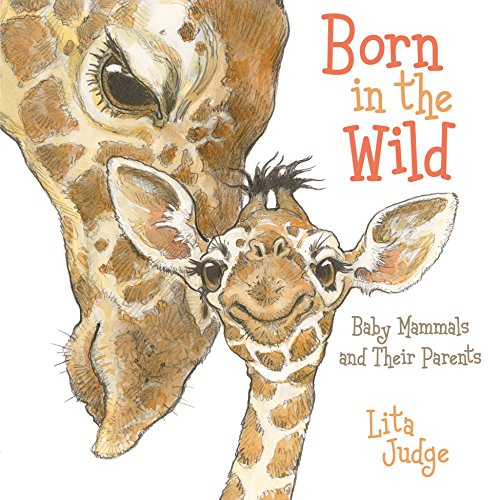 Born in the Wild: Baby Animals and Their Parents von ROARING BROOK PR