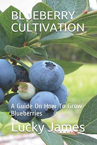 BLUEBERRY CULTIVATION: A Guide On How To Grow Blueberries von Independently published
