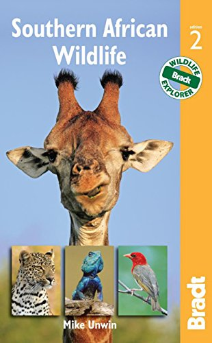 Southern African Wildlife (Bradt Wildlife Guides)