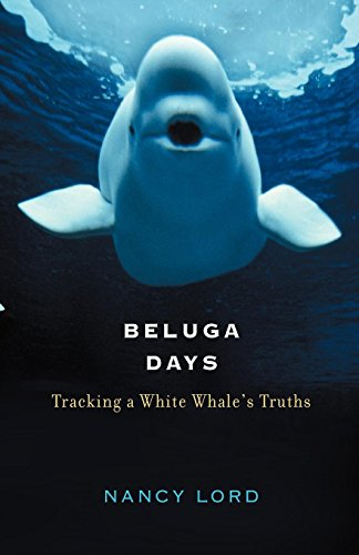 Beluga Days: Tracking a White Whale's Truths von Counterpoint