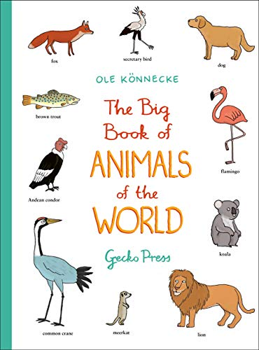 The Big Book of Animals of the World von Gecko Press