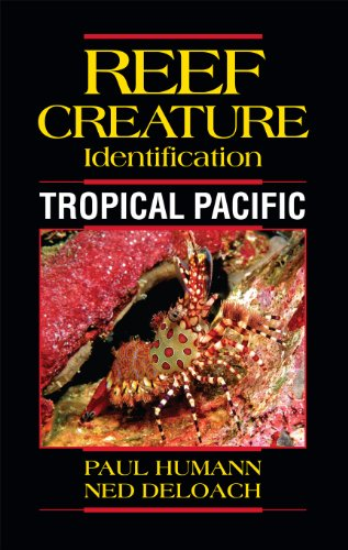 Reef Creature Identification: Tropical Pacific von Unbekannt