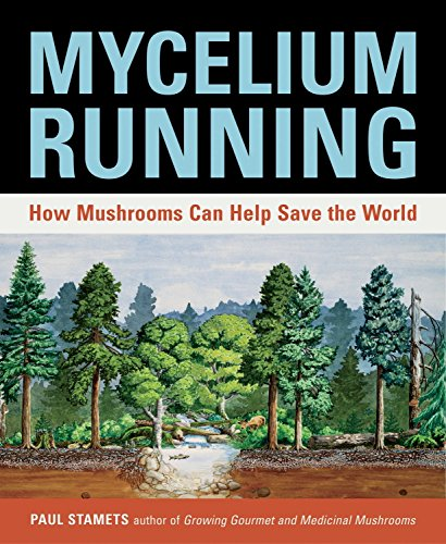 Mycelium Running: How Mushrooms Can Help Save the World: A Guide to Healing the Planet Through Gardening with Gourmet and Medicinal Mushrooms von Fungi Perfecti