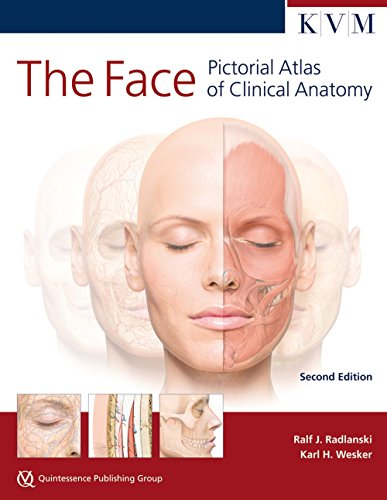 The Face: Pictorial Atlas of Clinical Anatomy von Quintessence Publishing/KVM