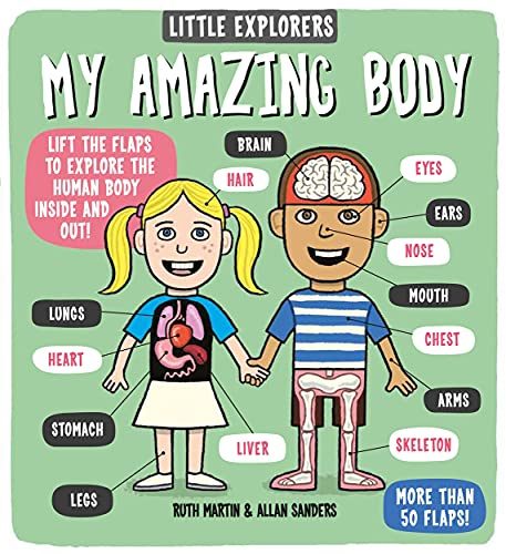Little Explorers: My Amazing Body von Templar Publishing