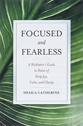 Focused and Fearless: A Meditator's Guide to States of Deep Joy, Calm, and Clarity von Wisdom Publications