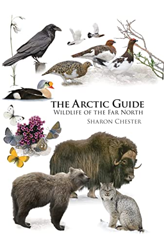 The Arctic Guide: Wildlife of the Far North (Princeton Field Guides, Band 109) von Princeton Univers. Press