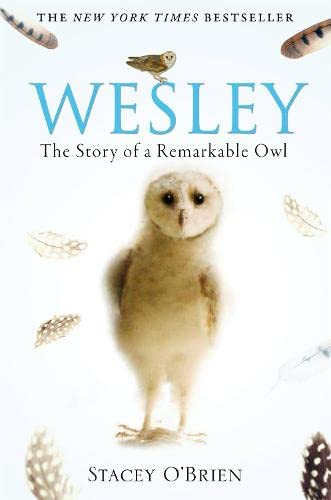 Wesley: The Story of a Remarkable Owl von Constable