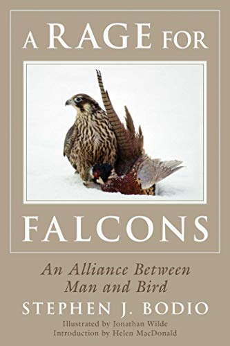 A Rage for Falcons: An Alliance Between Man and Bird von Skyhorse Publishing