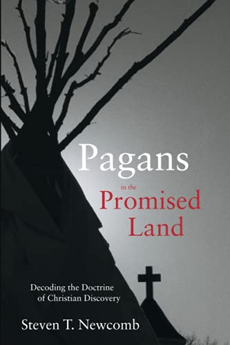 Pagans in the Promised Land von Fulcrum Publishing