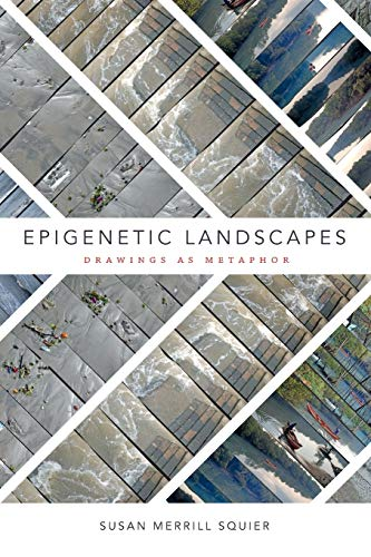 Epigenetic Landscapes: Drawings as Metaphor
