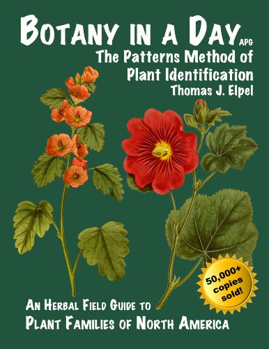 Botany in a Day: The Patterns Method of Plant Identification von The Patterns Method of Plant Identification