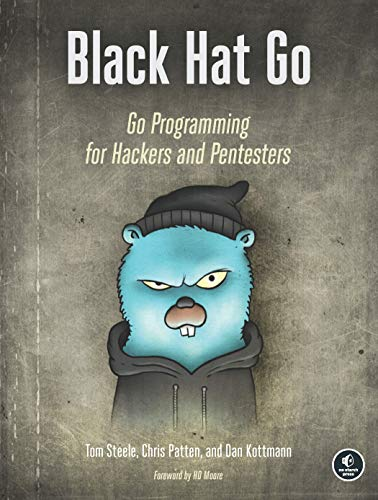Black Hat Go: Go Programming For Hackers and Pentesters von No Starch Press